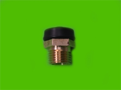 Plunger Fitting and Cap